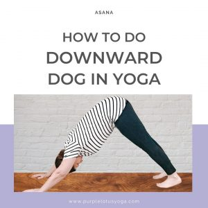 How to do downward dog in yoga feature