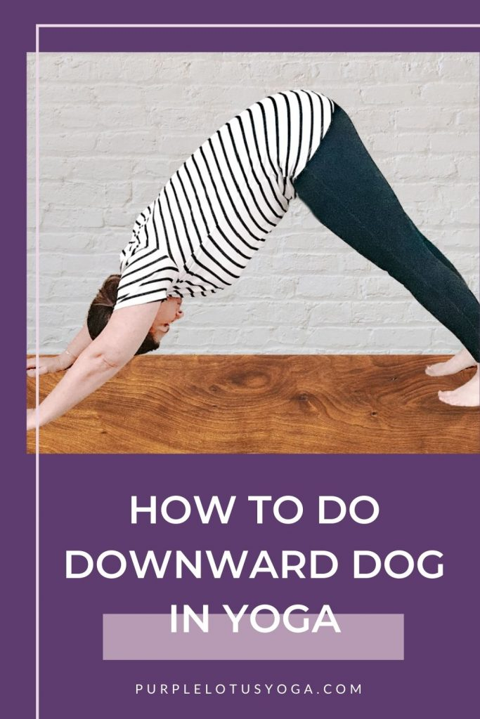how to do downward dog in yoga