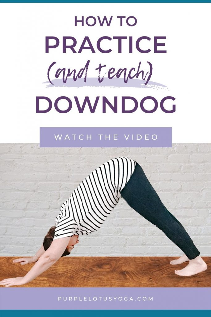 how to practice and teach downdog in yoga