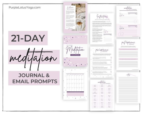 21 Meditation Journal and Email